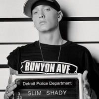 "Eminem Poster criminal records (24""x36"")"