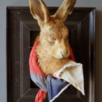 Henry The Taxidermy Framed Hare Designed By Rory Dobner