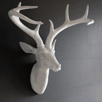 White Deco Deer Head with Amazing Antlers - Large