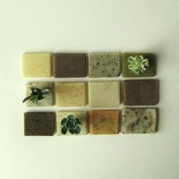 Some Of Each Please // 12 Soap Samples by prunellasoap on Etsy