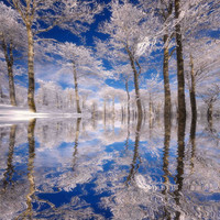 Dream in Blue Photographic Print by Philippe Sainte-Laudy at Art.com