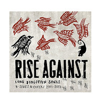 Rise Against - Long Forgotten Songs: B-Sides & Covers 2000-2013 Vinyl LP