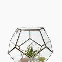 Pierre Faceted Terrarium