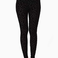Nasty Gal Wild Burnout Leggings