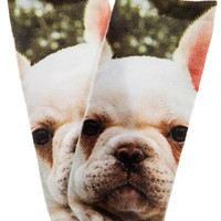 The Frenchie Puppy Sock