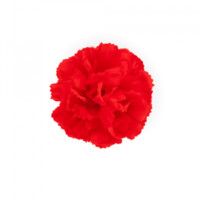 Ban.do Mini Pom Pom Flower | ban.do