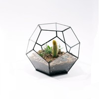 The Future Perfect - Table Dodecahedron Terrarium - Objects