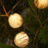 Snowball Lights