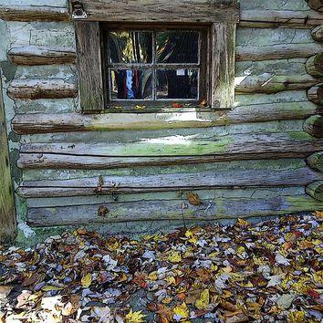 Log Cabin Window And Fall Leaves