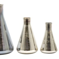 Mercury Glass Flasks