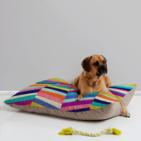 Jacqueline Maldonado Upward 1 Pet Bed