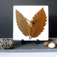 Unique Real Leaves Desk Clock Small Wall Clock - Decoupage Mulberry Paper and Dry Dried Pressed Leaves - Autumn Fall Botanical Clock