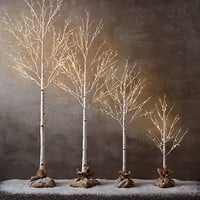 Winter Wonderland Tree - Birch