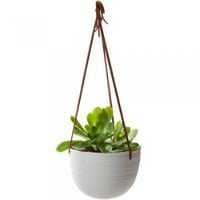 Scribble Hanging Planter : Branch: Sustainable Design for Living