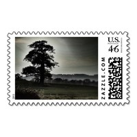 Tree Silhouette Stamp