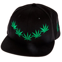 Chronic_BlackSnapBack
