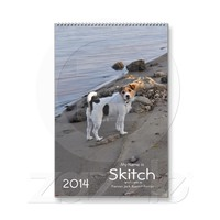 Jack Russell Terrier 2014 Dog Calendar from Zazzle.com