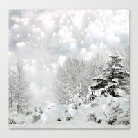 winter magic Stretched Canvas by Marianna Tankelevich