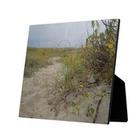 Beach Autumn Wildflowers Display Plaque