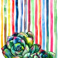 Rainbow Succulents - pencil & watercolor illustration Art Print by micklyn