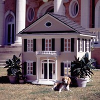 Luxury Pet Home