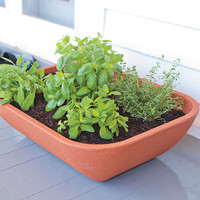 Double Walled Self Watering Herb Garden Planter With Fairy Garden Furniture - Plow & Hearth