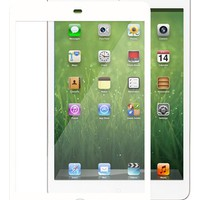 Moshi 'Tech iVisor XT' iPad Mini Screen Protector | Nordstrom