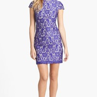 Ivy & Blu Lace Shift Dress (Petite) | Nordstrom