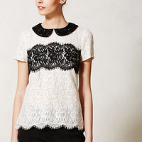 Lace Latitude Blouse