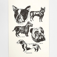 Alice Pattullo Dogs Art Print - Urban Outfitters