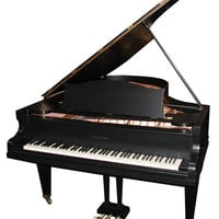 79.4597 Beautiful Antique Black Bechstein Grand Piano