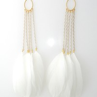 Gold hoop and white feather earrings