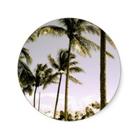 Customizable Palm Tree's Stickers