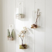 Wall Mounted Glass Vessels