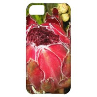 Protea Bouquet iPhone 5C Case