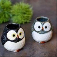 Owl Mini Container