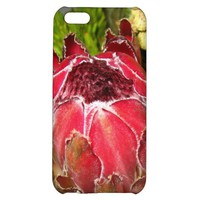 Protea Bouquet Case-Savvy iPhone 5C Case