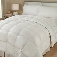Claritinâ?¢ Anti-Allergen Down Alternative Comforter - Bed Bath & Beyond