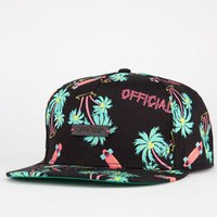 OFFICIAL Skate Hi Mens Snapback Hat