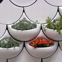Green Planter Wall Tiles