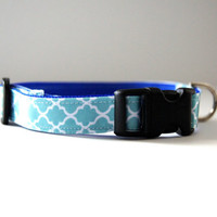 Blue Dog Collar Adjustable Sizes (XS, S, M)
