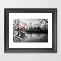 TREE-FLECTION Framed Art Print by catspaws